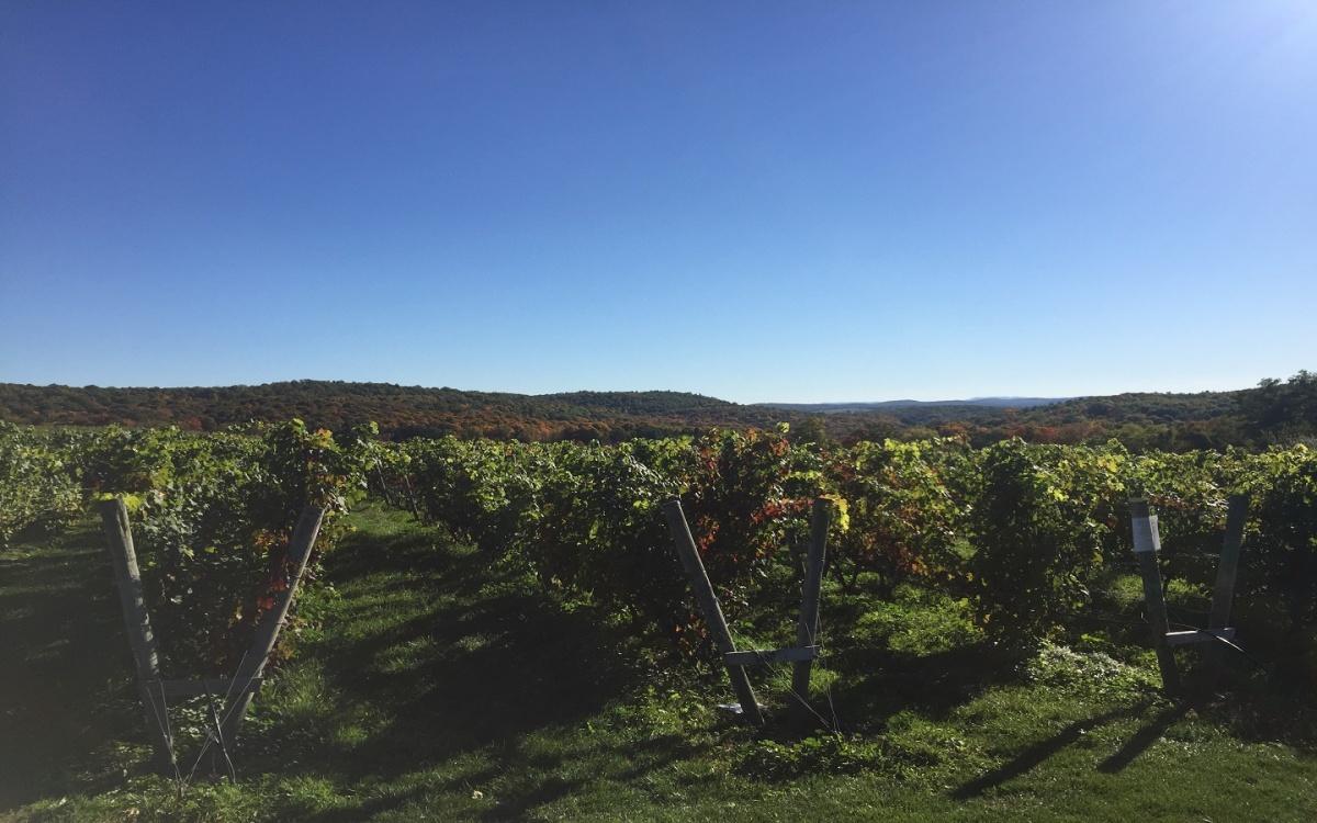 Millbrook Vineyards andWinery